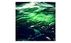 CWP-GreenOcean.jpg