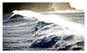 CWP-Surfer.jpg